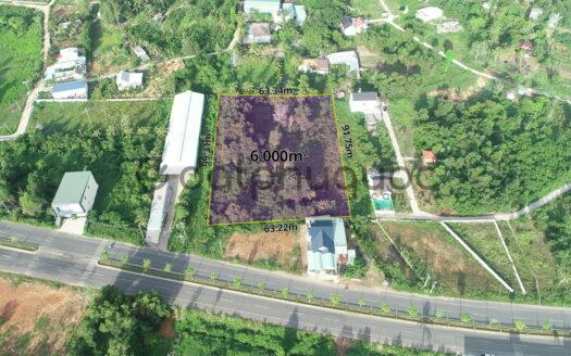 Bán 6000m² Đất mặt tiền đường Tuyến Tránh Dương Đông - Khu phố 5 - DĐ