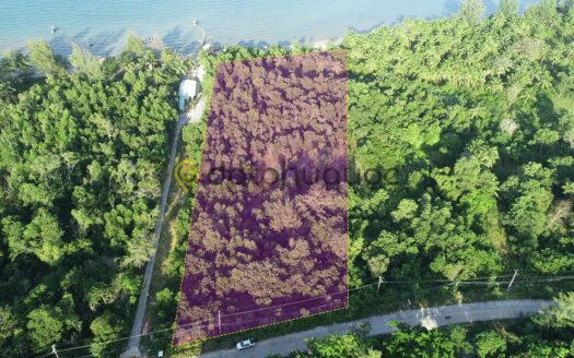 Bán 7000m² Đất mặt tiền đường Đông Đảo