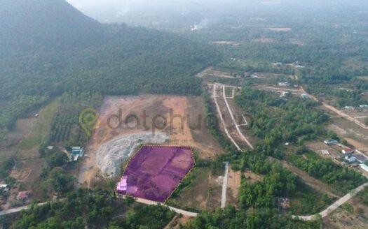 Bán 10254m² Đất mặt tiền đường Búng Gội - Khu Tượng
