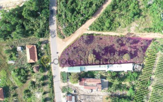 Bán 2188m² Đất mặt tiền đường Dương Đông - Cửa Cạn